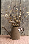 Rusty Tin Old Style Auto Watering Can with Pip Berries